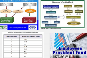 employer provident fund