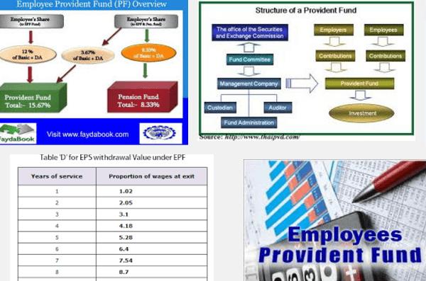 employer provident fund