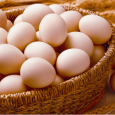 egg-form-production