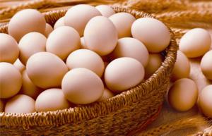 egg-form-production