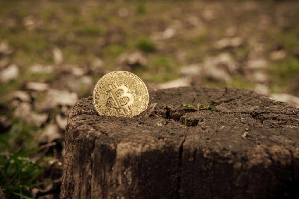 What Will Happen To Bitcoin When The Last Coin Is Mined