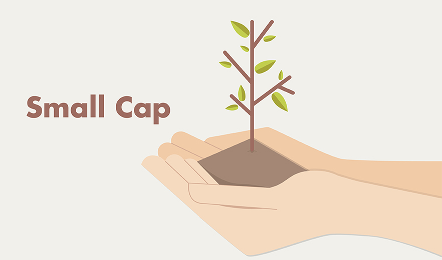 Investing in small-cap funds